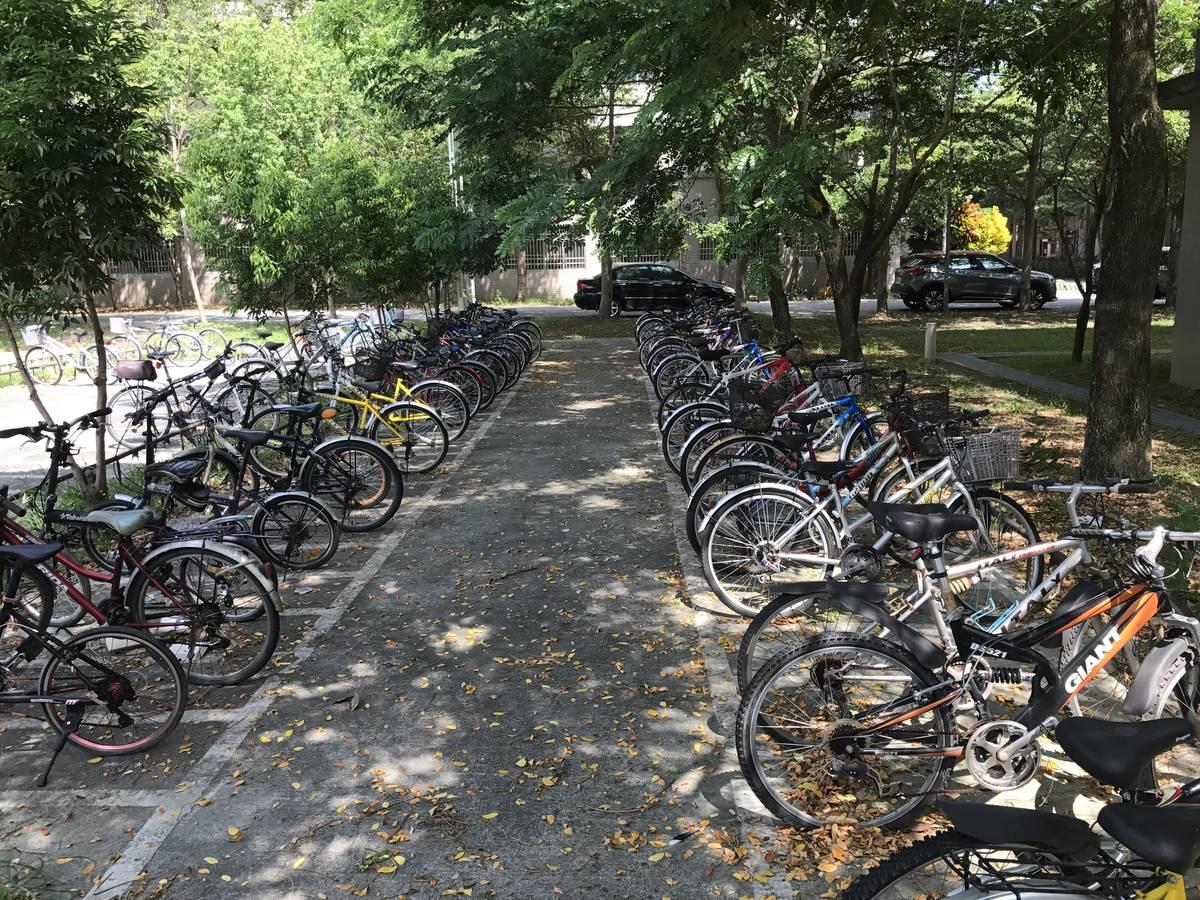 國立臺東大學免費提供腳踏車121輛,讓教職員校內及學生戶外教學使用,今年第二次參與世界綠色大學評比獲得第105名。